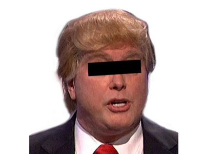 "Halloween Costume Donald ""Imitator"" Wig"