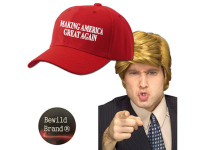 Halloween Costume Wig & Hat