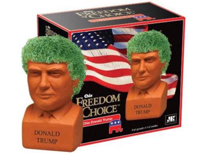 Donald Trump China Pottery